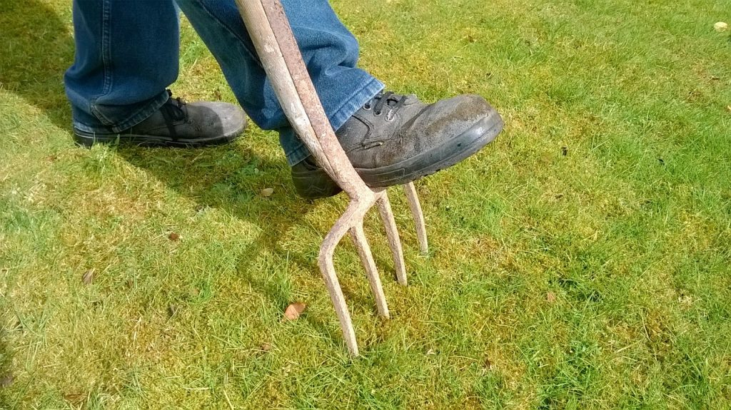 aerate-lawn
